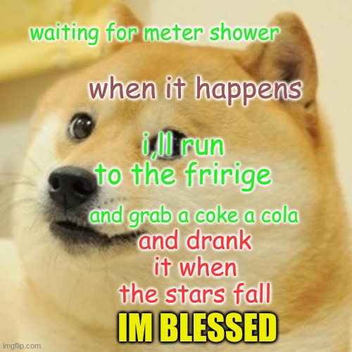 how to be blessed |  waiting for meter shower; when it happens; i,ll run to the fririge; and grab a coke a cola; and drank it when the stars fall; IM BLESSED | image tagged in memes,doge | made w/ Imgflip meme maker