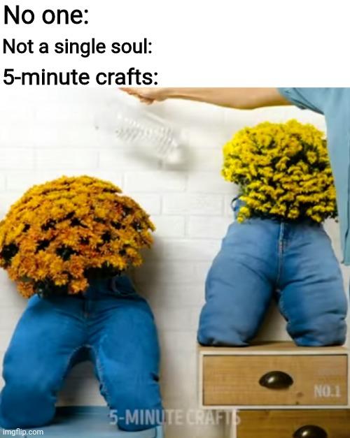 5 Minute Crafts Imgflip