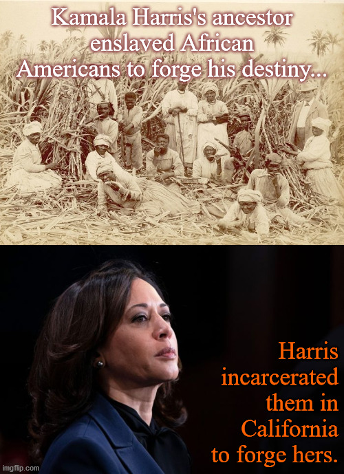 Kamala Harris's Ancestor |  Kamala Harris's ancestor enslaved African Americans to forge his destiny... Harris incarcerated them in California to forge hers. | image tagged in politics | made w/ Imgflip meme maker