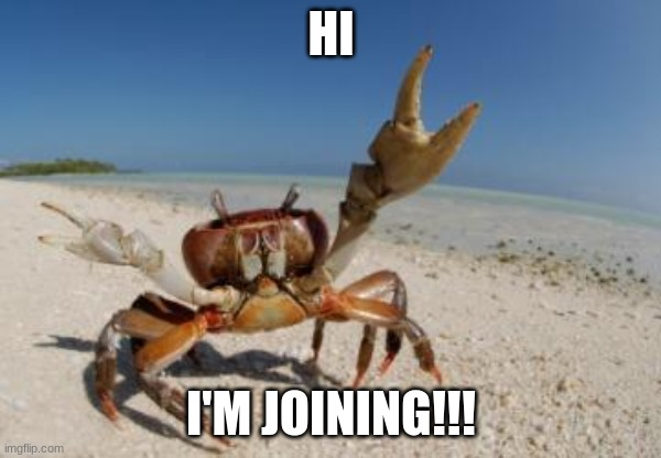 Crabz |  HI; I'M JOINING!!! | image tagged in crab | made w/ Imgflip meme maker