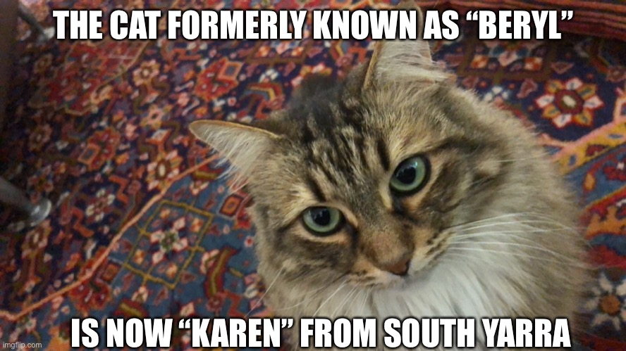 """Karen"" from south yarra 