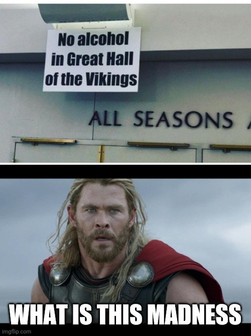 DON'T TAKE AWAY THE VIKINGS ALCOHOL |  WHAT IS THIS MADNESS | image tagged in vikings,thor,alcohol,stupid signs | made w/ Imgflip meme maker
