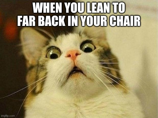 Scared Cat |  WHEN YOU LEAN TO FAR BACK IN YOUR CHAIR | image tagged in memes,scared cat | made w/ Imgflip meme maker