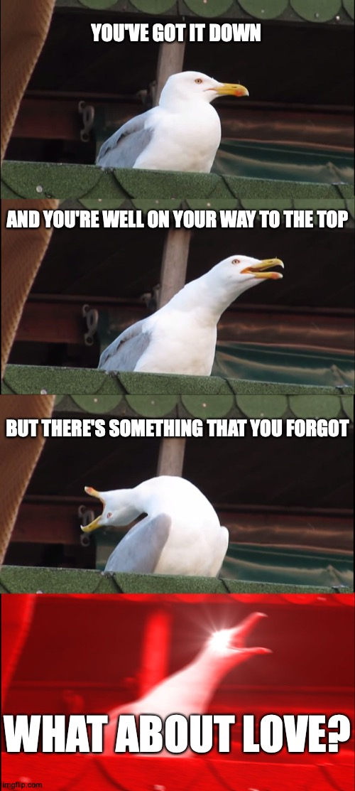 Seagull Can't Keep It Under Control |  YOU'VE GOT IT DOWN; AND YOU'RE WELL ON YOUR WAY TO THE TOP; BUT THERE'S SOMETHING THAT YOU FORGOT; WHAT ABOUT LOVE? | image tagged in memes,inhaling seagull,heart,toronto,80s music,yay | made w/ Imgflip meme maker