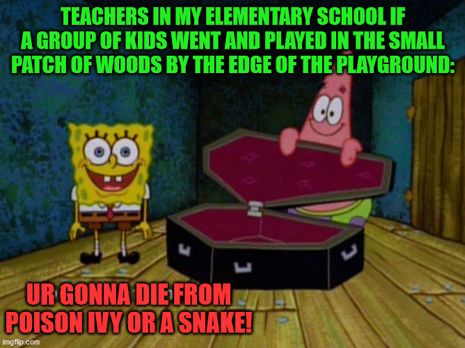 Ok Get In! |  TEACHERS IN MY ELEMENTARY SCHOOL IF A GROUP OF KIDS WENT AND PLAYED IN THE SMALL PATCH OF WOODS BY THE EDGE OF THE PLAYGROUND:; UR GONNA DIE FROM POISON IVY OR A SNAKE! | image tagged in ok get in,elementary,school,playground,woods,memes | made w/ Imgflip meme maker