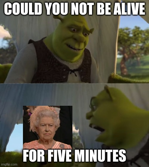 Could you not ___ for 5 MINUTES |  COULD YOU NOT BE ALIVE; FOR FIVE MINUTES | image tagged in could you not ___ for 5 minutes | made w/ Imgflip meme maker