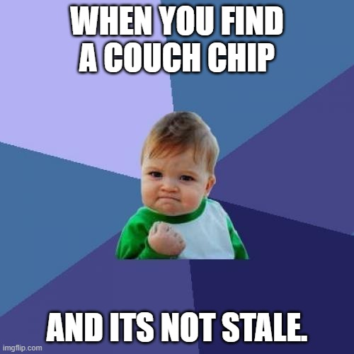 Success Kid |  WHEN YOU FIND A COUCH CHIP; AND ITS NOT STALE. | image tagged in memes,success kid | made w/ Imgflip meme maker