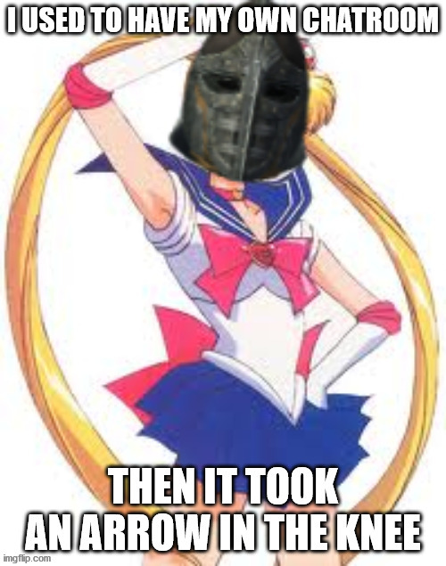 SailorMoon.Com Took An Arrow In The Knee | image tagged in elder scrolls,the elder scrolls,sailor moon,sailormooncom,skyrim,arrow in the knee | made w/ Imgflip meme maker