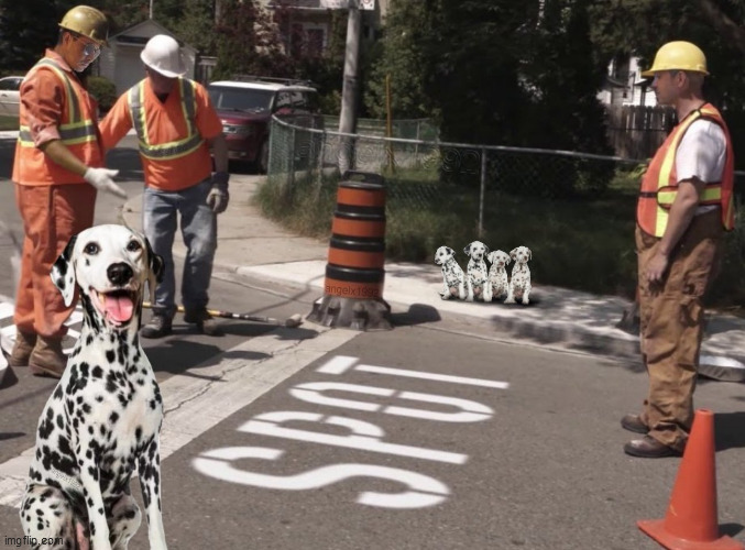 image tagged in dogs,dalmatians,spot,pets,puppies,stop sign | made w/ Imgflip meme maker