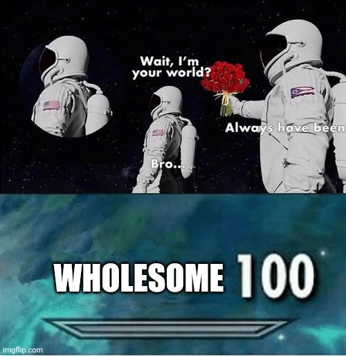 This is extremely wholesome |  WHOLESOME | image tagged in skyrim 100 blank,memes,funny memes,wholesome,always has been | made w/ Imgflip meme maker