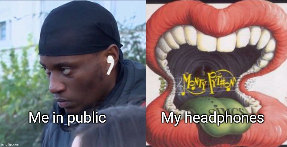 Me in public; My headphones | image tagged in public headphones,monty python | made w/ Imgflip meme maker