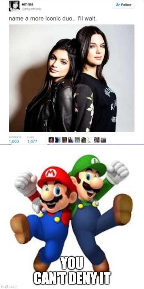 YOU CAN'T DENY IT | image tagged in mario,luigi,super mario bros,name a more iconic duo | made w/ Imgflip meme maker