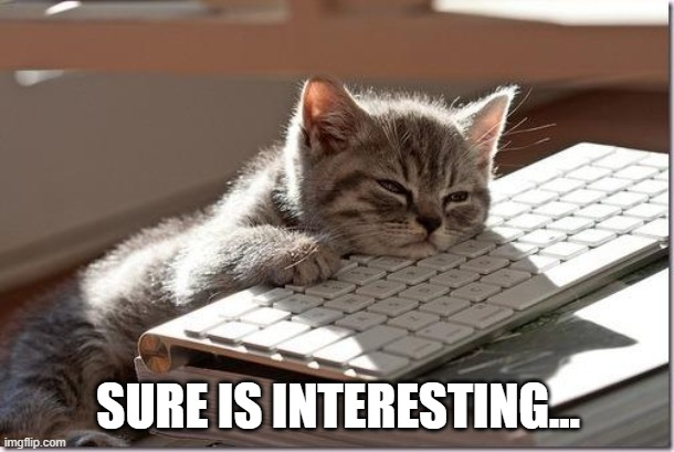 Bored Keyboard Cat | SURE IS INTERESTING... | image tagged in bored keyboard cat | made w/ Imgflip meme maker