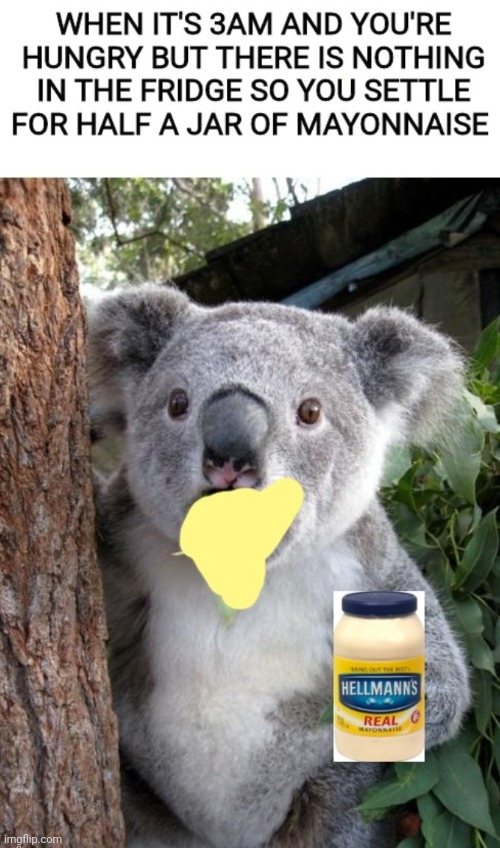 Mmm | image tagged in memes,surprised koala,food | made w/ Imgflip meme maker