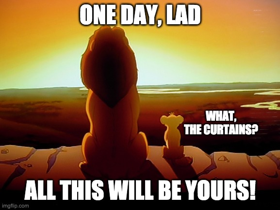 Simba and the Holy Grail |  ONE DAY, LAD; WHAT, THE CURTAINS? ALL THIS WILL BE YOURS! | image tagged in memes,lion king,what the curtains,all this will be yours,monty python and the holy grail | made w/ Imgflip meme maker