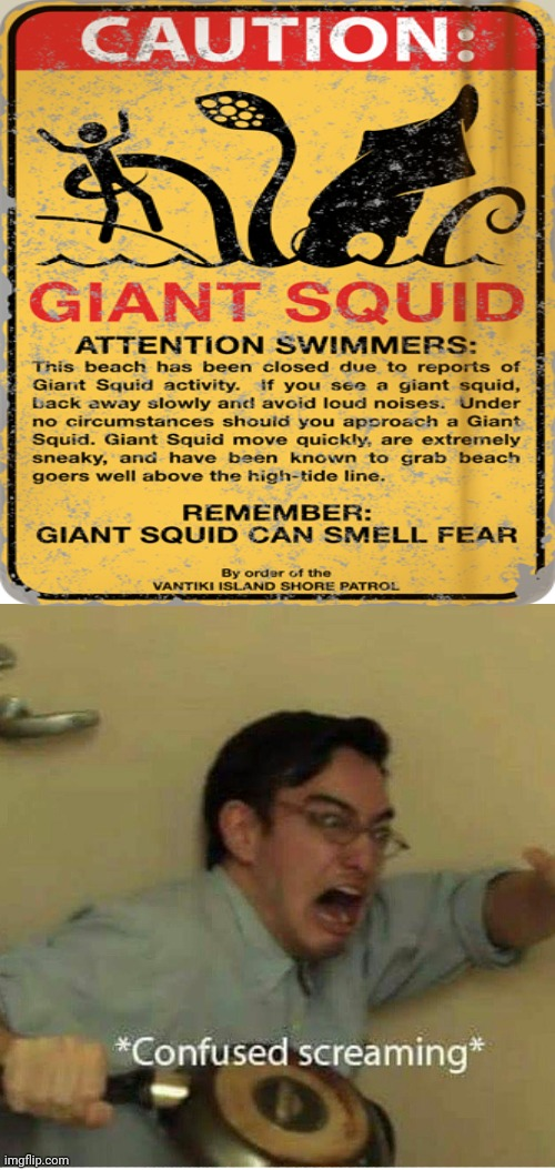 Sign showing Caution: Giant Squid | image tagged in confused screaming,funny,memes,meme,squid,signs | made w/ Imgflip meme maker