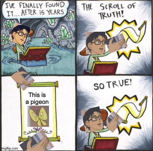 The Real Scroll Of Truth | This is a pigeon | image tagged in the real scroll of truth | made w/ Imgflip meme maker