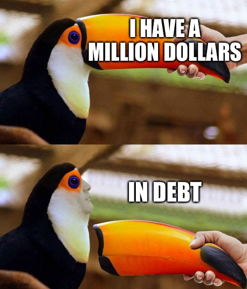 Sad. |  I HAVE A MILLION DOLLARS; IN DEBT | image tagged in toucan beak,memes,funny,one million dollars,debt,sad | made w/ Imgflip meme maker