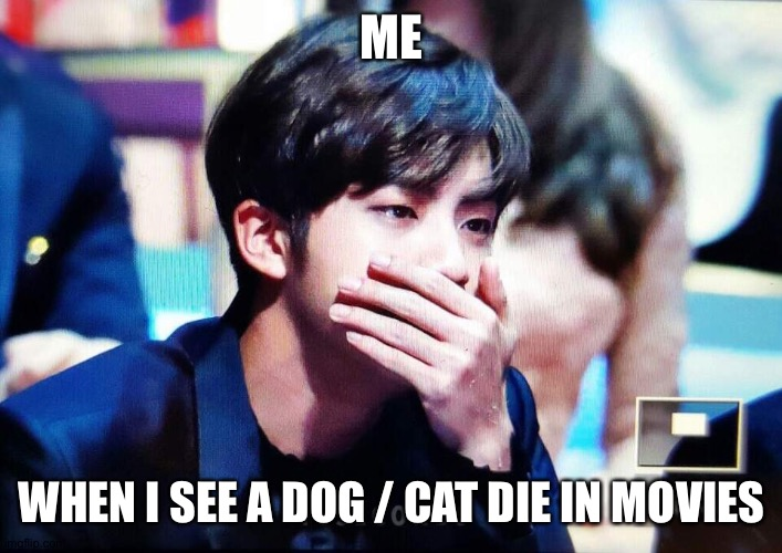 bts |  ME; WHEN I SEE A DOG / CAT DIE IN MOVIES | image tagged in bts | made w/ Imgflip meme maker