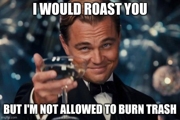 Leonardo Dicaprio Cheers |  I WOULD ROAST YOU; BUT I'M NOT ALLOWED TO BURN TRASH | image tagged in memes,leonardo dicaprio cheers | made w/ Imgflip meme maker