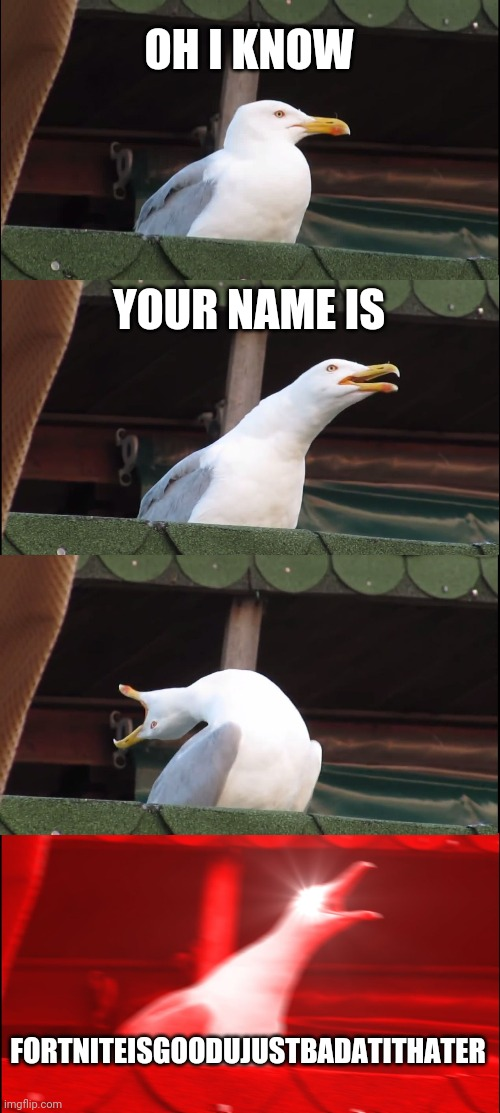 OH I KNOW YOUR NAME IS FORTNITEISGOODUJUSTBADATITHATER | image tagged in memes,inhaling seagull | made w/ Imgflip meme maker