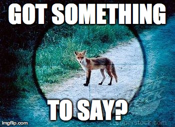 Got something to say? | GOT SOMETHING TO SAY? | image tagged in what does the fox say,funny,memes | made w/ Imgflip meme maker