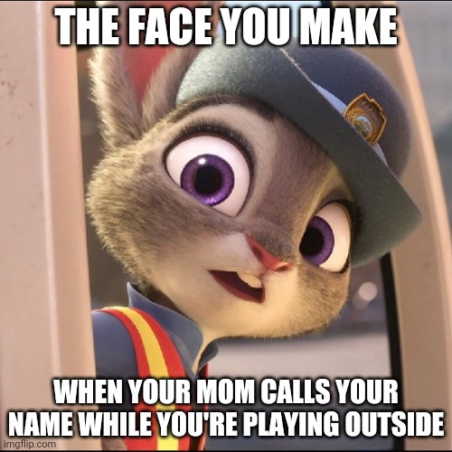 Judy, your mom is calling you |  THE FACE YOU MAKE; WHEN YOUR MOM CALLS YOUR NAME WHILE YOU'RE PLAYING OUTSIDE | image tagged in judy hopps surprised,judy hopps,zootopia,the face you make when,funny,memes | made w/ Imgflip meme maker