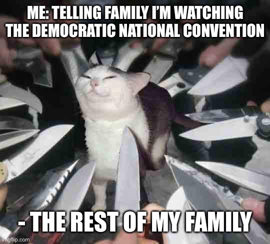 Me: Telling family I'm watching the Democratic National Convention |  ME: TELLING FAMILY I'M WATCHING THE DEMOCRATIC NATIONAL CONVENTION; - THE REST OF MY FAMILY | image tagged in knife cat,democrats,republicans,democratic party | made w/ Imgflip meme maker