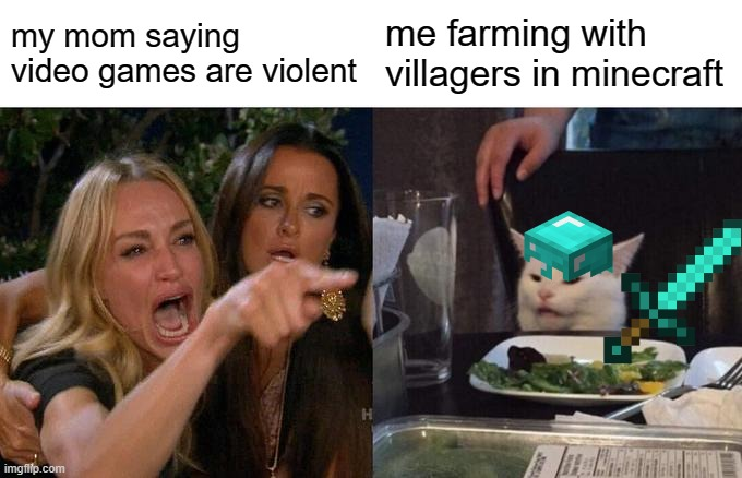 Woman Yelling At Cat |  my mom saying video games are violent; me farming with villagers in minecraft | image tagged in memes,woman yelling at cat | made w/ Imgflip meme maker