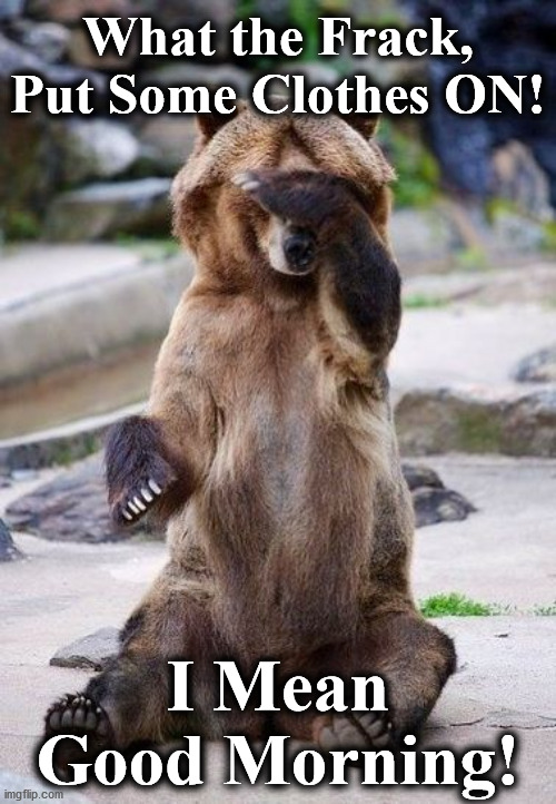 bear |  What the Frack, Put Some Clothes ON! I Mean Good Morning! | image tagged in bear | made w/ Imgflip meme maker