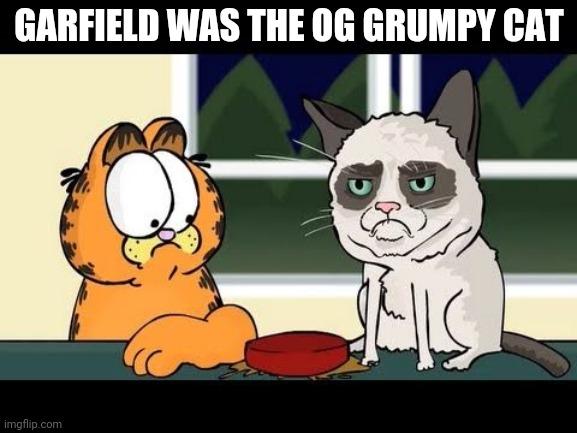 Grumpy Cat Garfield Imgflip