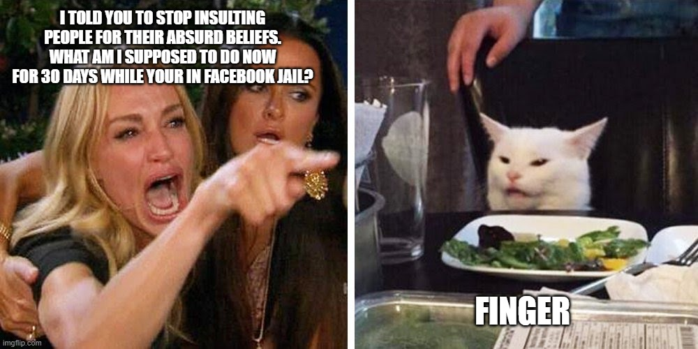 what to do while he is away? |  I TOLD YOU TO STOP INSULTING PEOPLE FOR THEIR ABSURD BELIEFS. WHAT AM I SUPPOSED TO DO NOW FOR 30 DAYS WHILE YOUR IN FACEBOOK JAIL? FINGER | image tagged in smudge the cat,facebook jail,finger | made w/ Imgflip meme maker