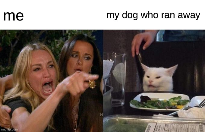 Woman Yelling At Cat |  me; my dog who ran away | image tagged in memes,woman yelling at cat | made w/ Imgflip meme maker