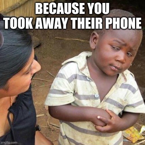 Third World Skeptical Kid Meme | BECAUSE YOU TOOK AWAY THEIR PHONE | image tagged in memes,third world skeptical kid | made w/ Imgflip meme maker