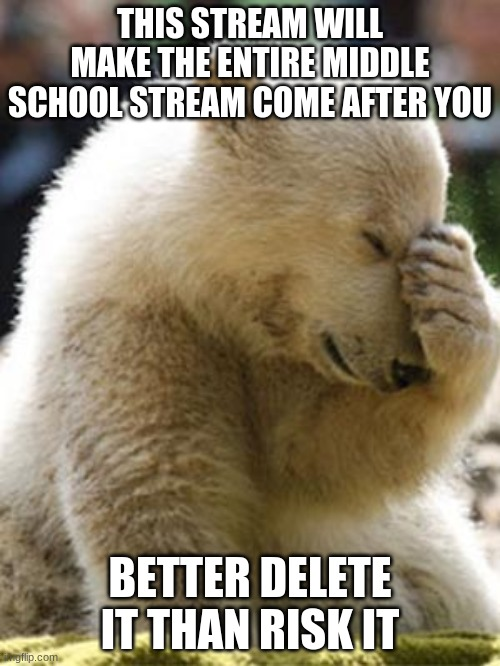 fuck you mason |  THIS STREAM WILL MAKE THE ENTIRE MIDDLE SCHOOL STREAM COME AFTER YOU; BETTER DELETE IT THAN RISK IT | image tagged in memes,facepalm bear | made w/ Imgflip meme maker