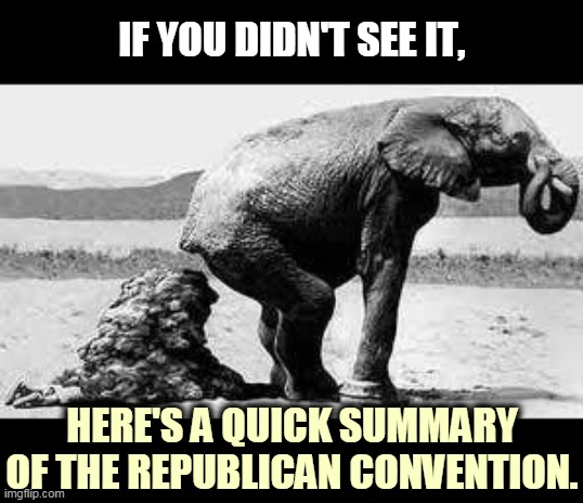Yeah, that's pretty much it. |  IF YOU DIDN'T SEE IT, HERE'S A QUICK SUMMARY OF THE REPUBLICAN CONVENTION. | image tagged in elephant poopy,trump,gop,republican,talking,garbage | made w/ Imgflip meme maker
