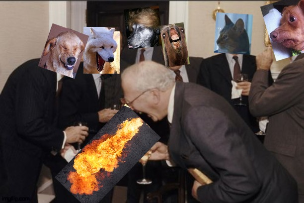 dirty dogs | image tagged in memes,laughing men in suits | made w/ Imgflip meme maker
