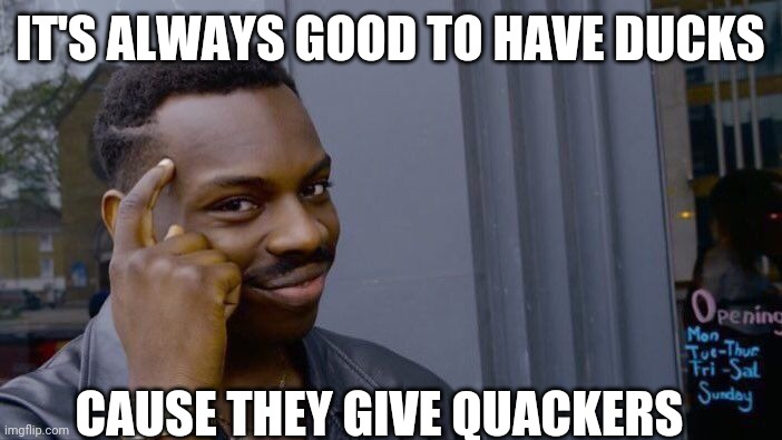 I love it |  IT'S ALWAYS GOOD TO HAVE DUCKS; CAUSE THEY GIVE QUACKERS | image tagged in memes,roll safe think about it | made w/ Imgflip meme maker