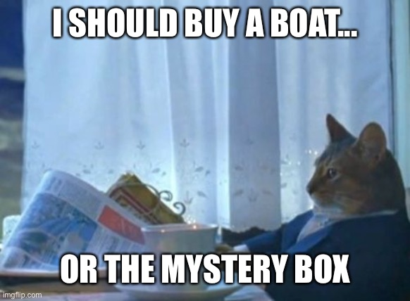 I Should Buy A Boat Cat |  I SHOULD BUY A BOAT... OR THE MYSTERY BOX | image tagged in memes,i should buy a boat cat | made w/ Imgflip meme maker