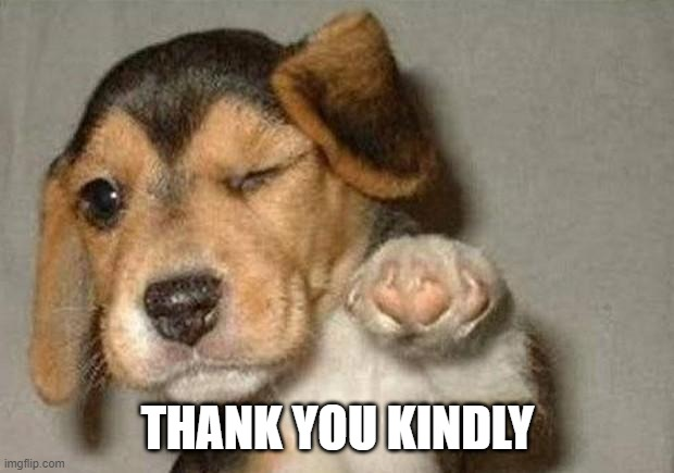 Winking Dog | THANK YOU KINDLY | image tagged in winking dog | made w/ Imgflip meme maker