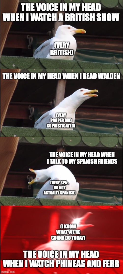 I cant be the only one XD |  THE VOICE IN MY HEAD WHEN I WATCH A BRITISH SHOW; (VERY BRITISH); THE VOICE IN MY HEAD WHEN I READ WALDEN; (VERY PROPER AND SOPHISTICATED); THE VOICE IN MY HEAD WHEN I TALK TO MY SPANISH FRIENDS; (VERY SPA-. OK NOT ACTUALLY SPANISH); (I KNOW WHAT WE'RE GONNA DO TODAY); THE VOICE IN MY HEAD WHEN I WATCH PHINEAS AND FERB | image tagged in memes,inhaling seagull,phineas and ferb,walden,british,anyone else | made w/ Imgflip meme maker