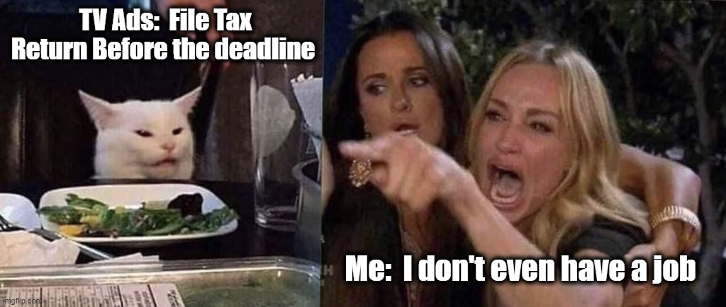 women yelling at cat |  TV Ads:  File Tax Return Before the deadline; Me:  I don't even have a job | image tagged in taxpayer,jobless,youth,funny memes,woman yelling at cat | made w/ Imgflip meme maker