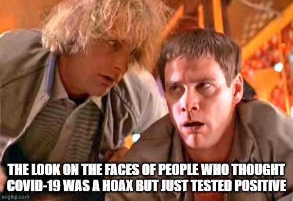 Harry and Lloyd Test COVID Positive |  THE LOOK ON THE FACES OF PEOPLE WHO THOUGHT COVID-19 WAS A HOAX BUT JUST TESTED POSITIVE | image tagged in dumb and dumber,covid-19,coronavirus | made w/ Imgflip meme maker