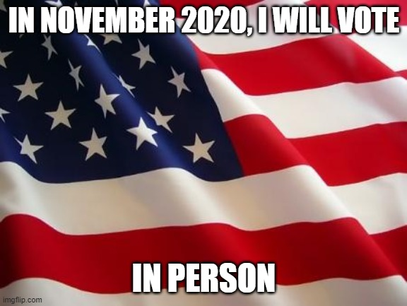 Me voting November 2020 - Imgflip
