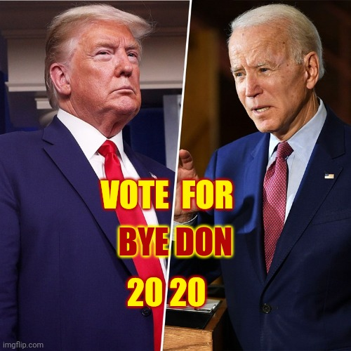Buh-Bye Don |  BYE DON; VOTE  FOR; 20 20 | image tagged in trump biden,memes,trump unfit unqualified dangerous,liar in chief,lock him up,bye don | made w/ Imgflip meme maker
