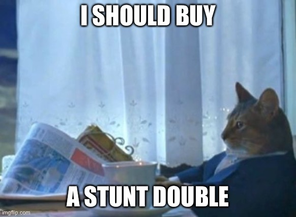 I Should Buy A Boat Cat |  I SHOULD BUY; A STUNT DOUBLE | image tagged in memes,i should buy a boat cat | made w/ Imgflip meme maker