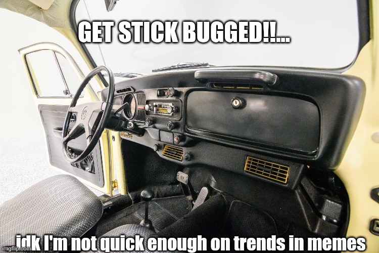 Get Stick Bugged!! |  GET STICK BUGGED!!... ...idk I'm not quick enough on trends in memes | image tagged in stick,bugs,beetle,volkswagen | made w/ Imgflip meme maker