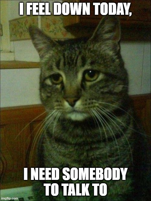 Depressed Cat |  I FEEL DOWN TODAY, I NEED SOMEBODY TO TALK TO | image tagged in memes,depressed cat | made w/ Imgflip meme maker