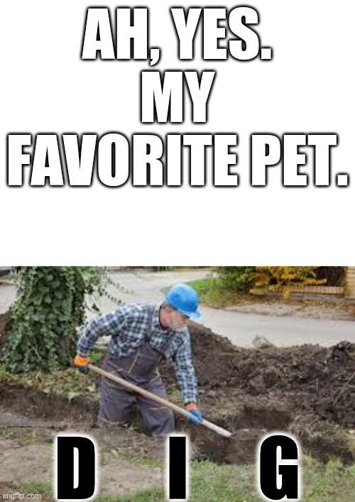 AH, YES. MY FAVORITE PET. D     I     G | image tagged in blank white template | made w/ Imgflip meme maker