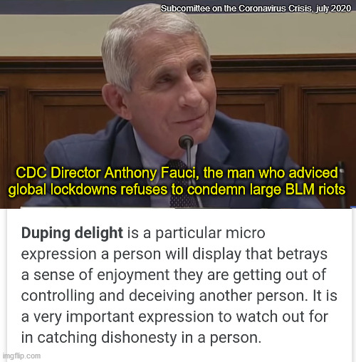 Fauci riot approval |  Subcomittee on the Coronavirus Crisis, july 2020; CDC Director Anthony Fauci, the man who adviced global lockdowns refuses to condemn large BLM riots | image tagged in covidiots,cdc,plandemic,scamdemic,coronavirus,nwo | made w/ Imgflip meme maker